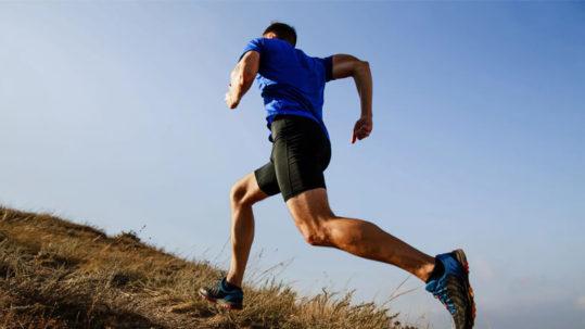 orientações para prescrição de exercícios